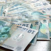Bugetarii ar putea beneficia de vouchere culturale in valoare de 125 de lei – Initiativa legislativa