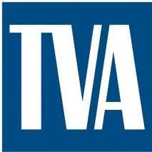Cireașa nelegalității pe tortul TVA