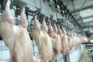 Producatorii contesta informatiile referitoare la rezidurile din carnea de pasare; pesticidul nu se mai fabrica de 8-10 ani