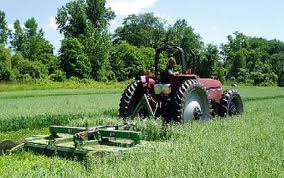 175 euro/hectar, vor primi fermierii care au intre 5 si 30 de hectare de teren