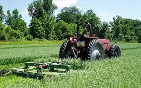 Agricultura romaneasca a pierdut 700 de milioane de euro