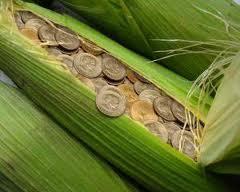 Contributia agriculturii in economia romaneasca pe 2014