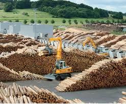 Masurile de simplificare la TVA pentru livrarea de masa lemnoasa, se vor aplica pana la 31 decembrie 2016