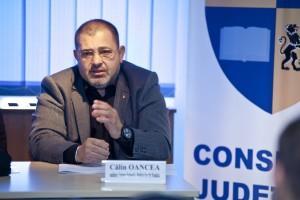 Calin Oancea, mediator