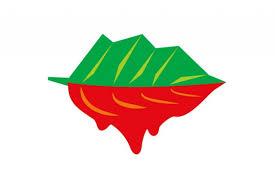 salvati rosia montana logo