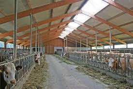 Societatile agricole si asociatiile de fermieri vor plati de la 1 ianuarie, impozit pentru grajduri si sere